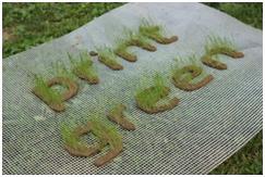 pro-gct-logo-v01
